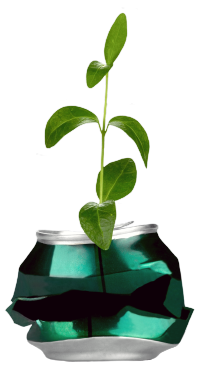 Plant in a can.